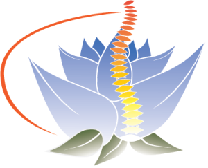 a-new-life-chiropractic-logo-300x243.png